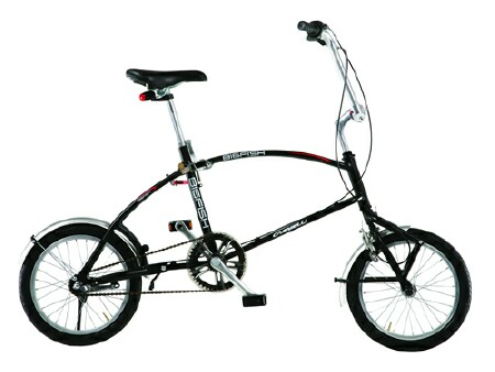 Bigfish folding bike