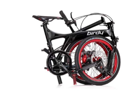Birdy Rohloff folding bike - folded